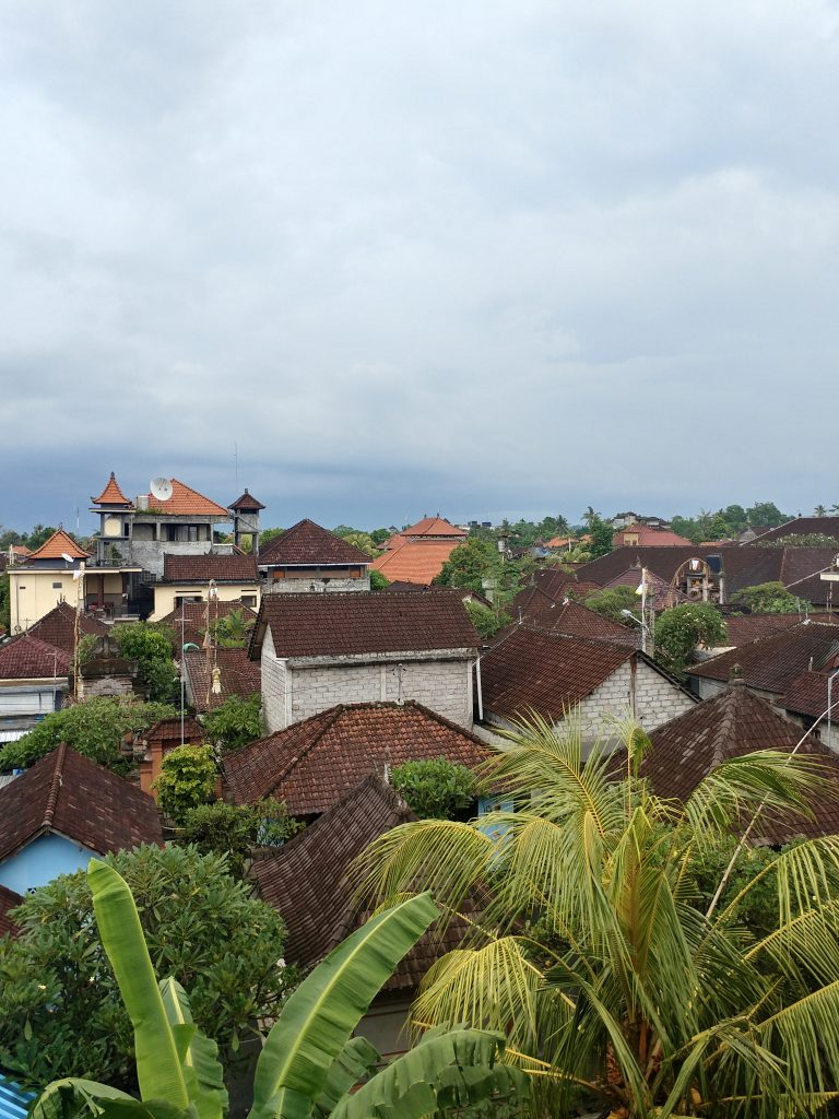jungle town Ubud