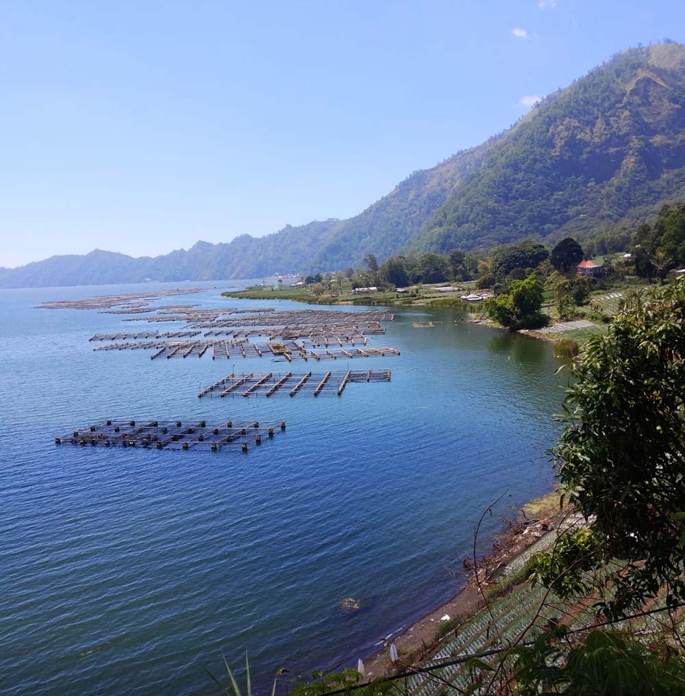 fish farming at Lake Batur