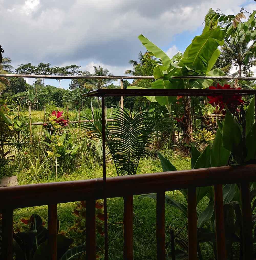 view at Ariel Bungalow