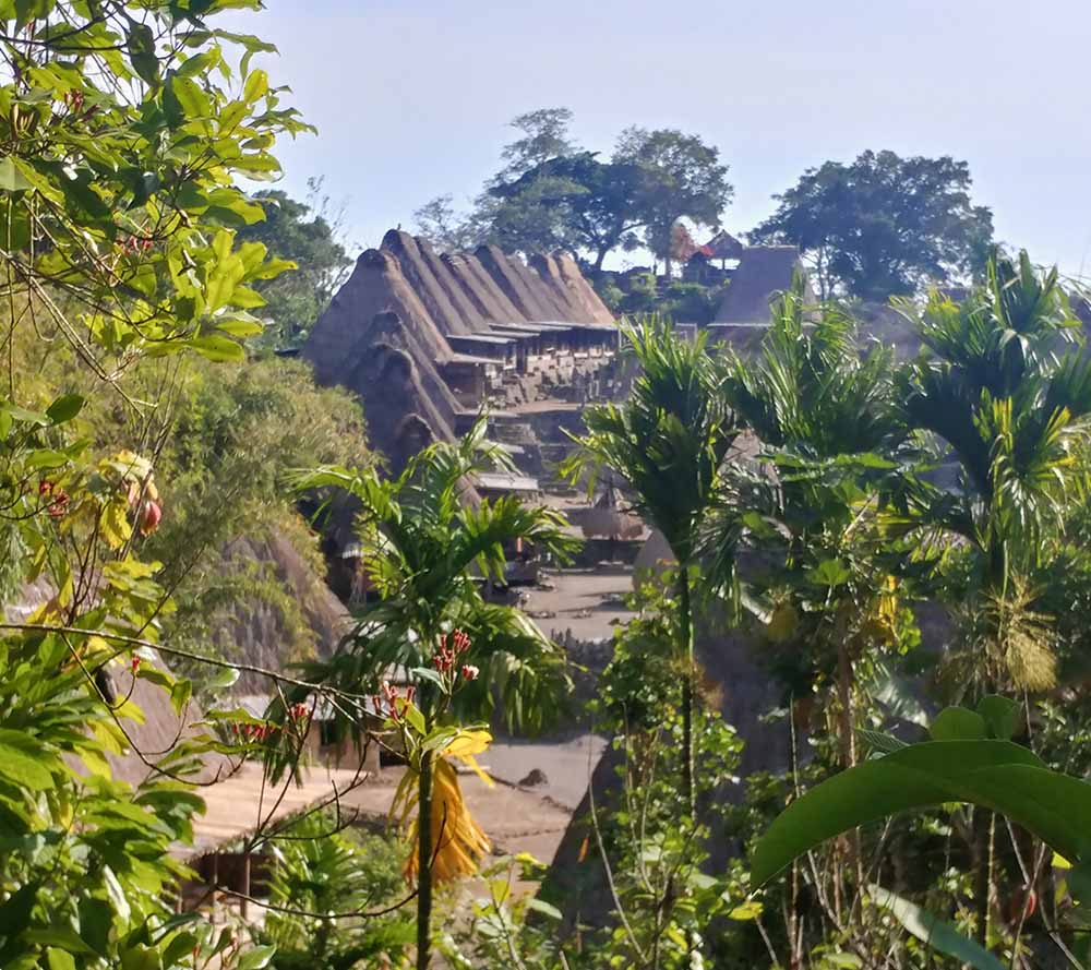traditional village called Bena