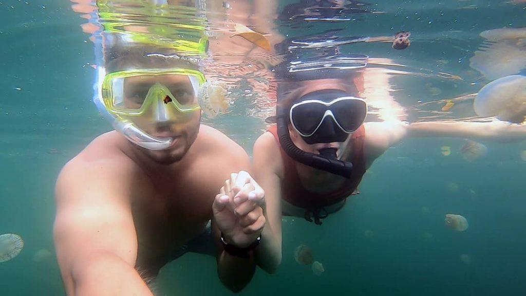 snorkeling at the jellyfish lake