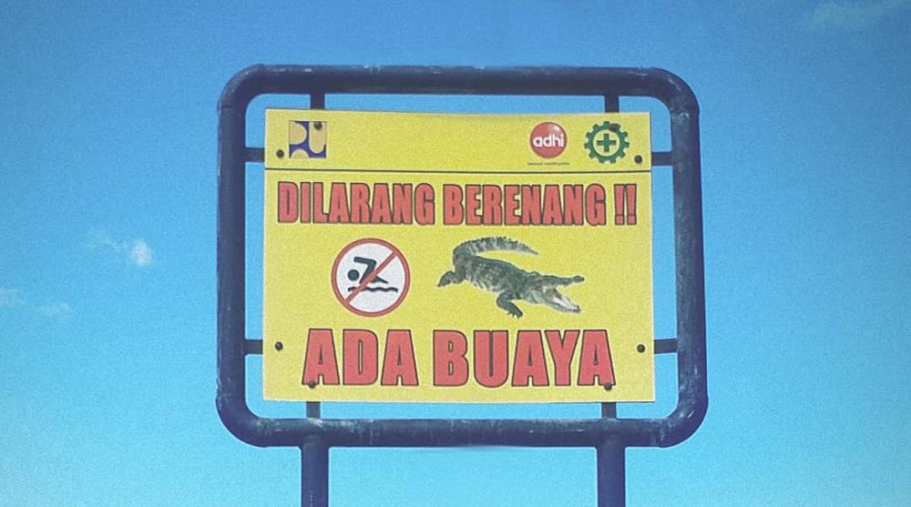 beware of the crocodiles